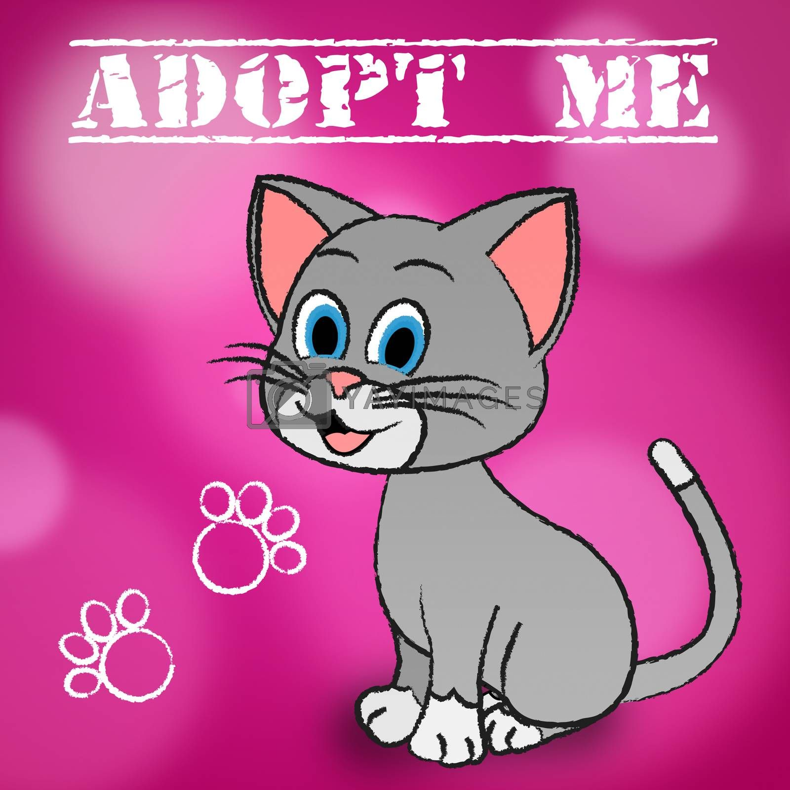 Adopt Cat Meaning Felines Kitty And Pedigree
