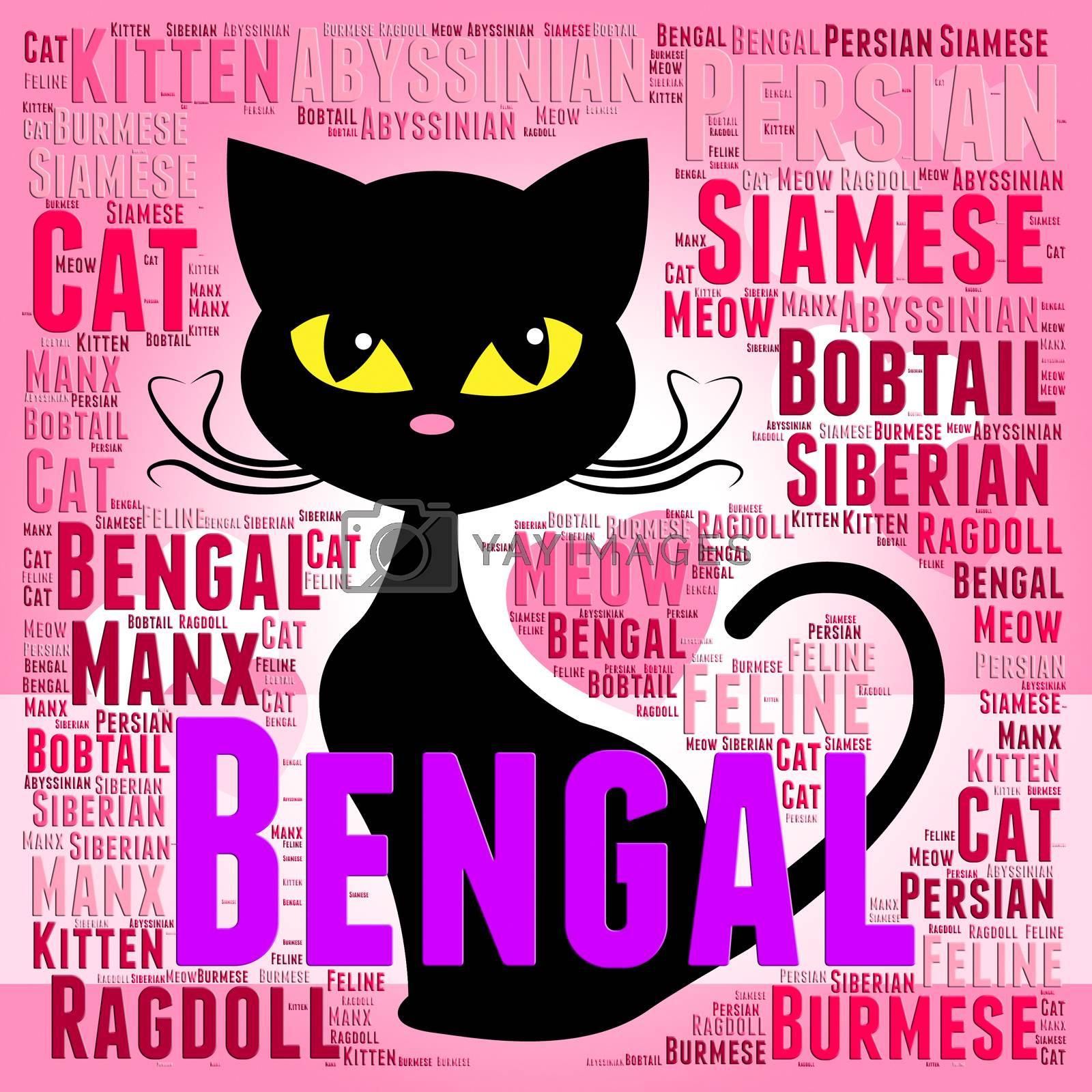 Bengal Cat Indicating Mating Wild And Pet