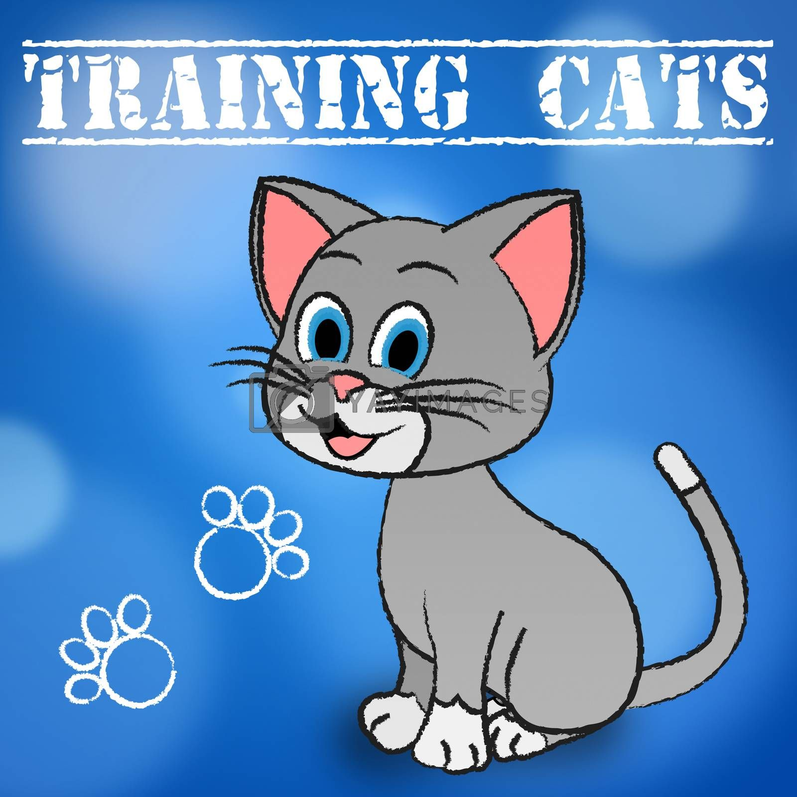 Training Cats Indicating Pets Trained And Felines