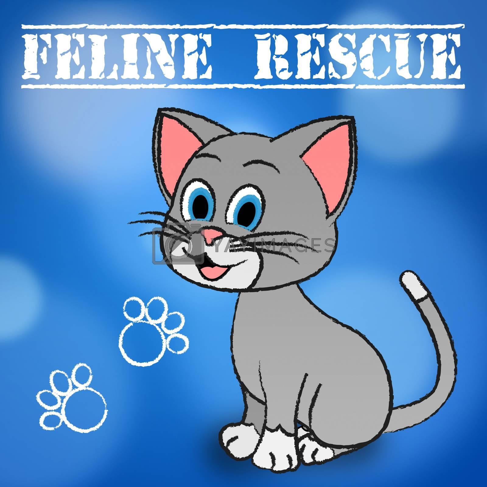Feline Rescue Indicating Pets Felines And Kitten