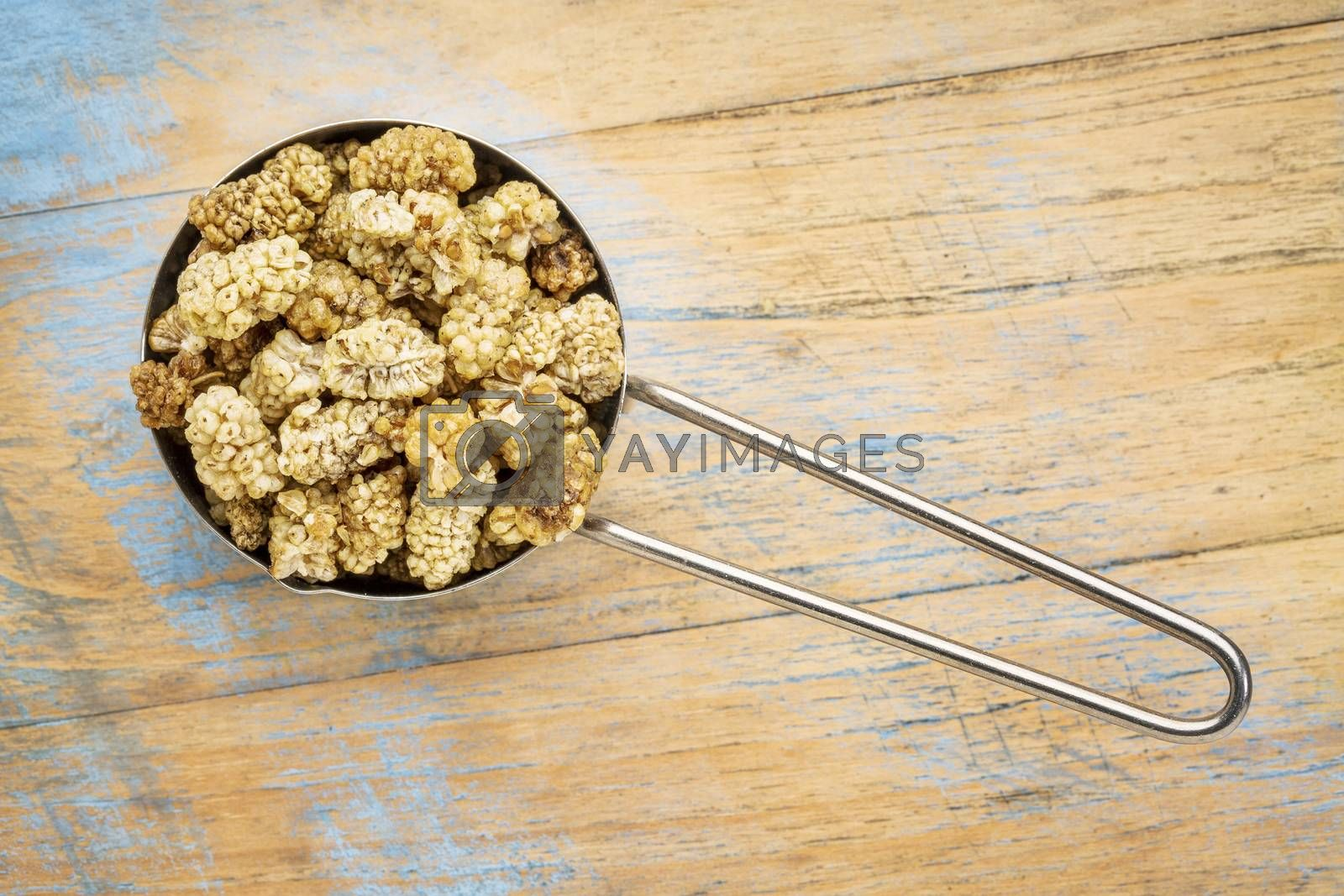 sun-dried white mulberry berries on a measuring metal scoop against grunge wood