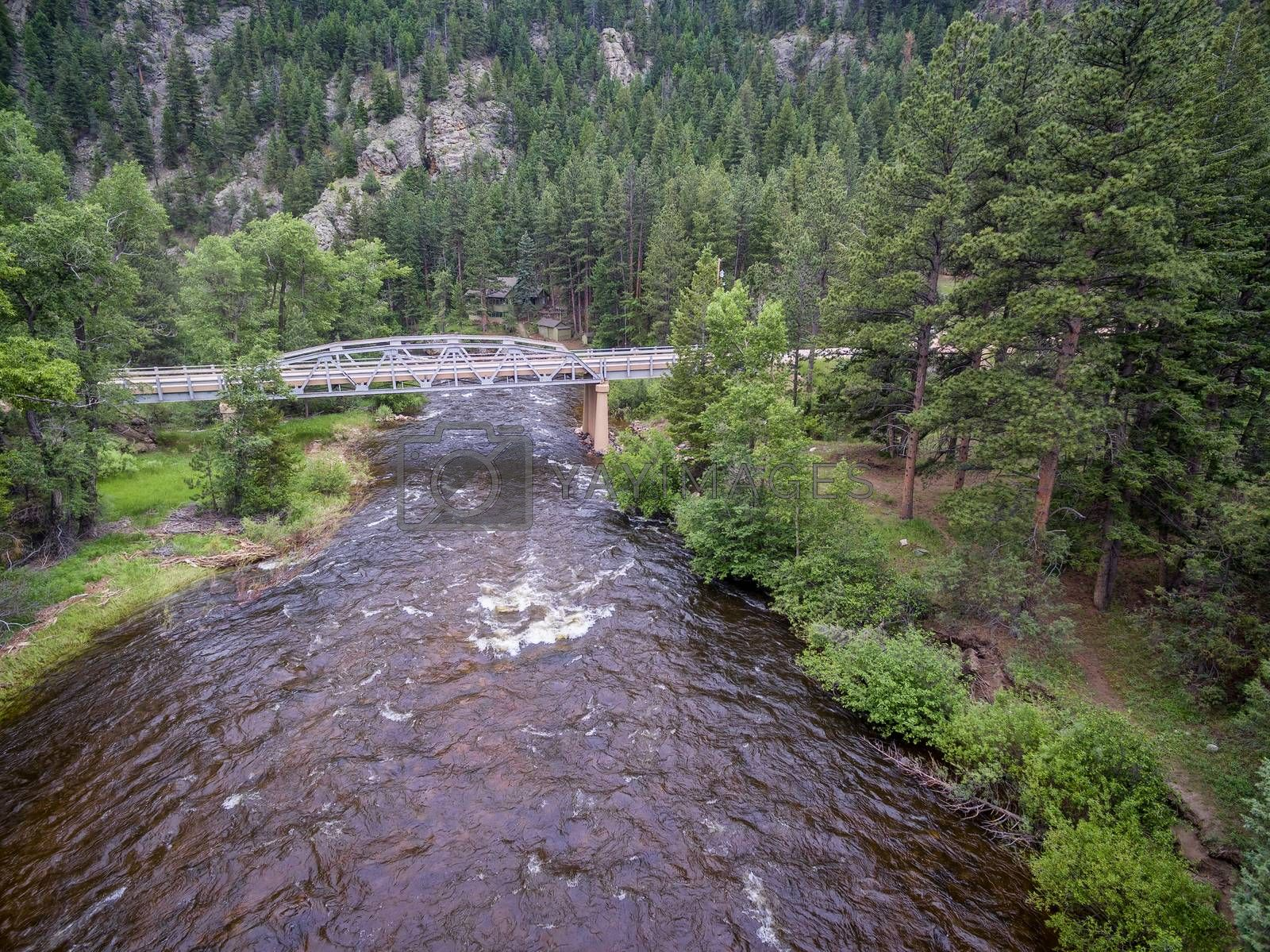 Cache la Poudre River and Pingree Park Road bridge - aerial view in early summer