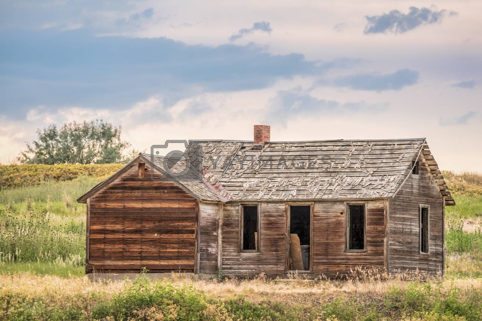 old abandoned farmhouse on a prairie, St Vrain State Park near Longmont, Colorado