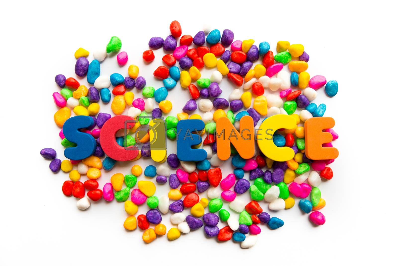 science word in colorful stone