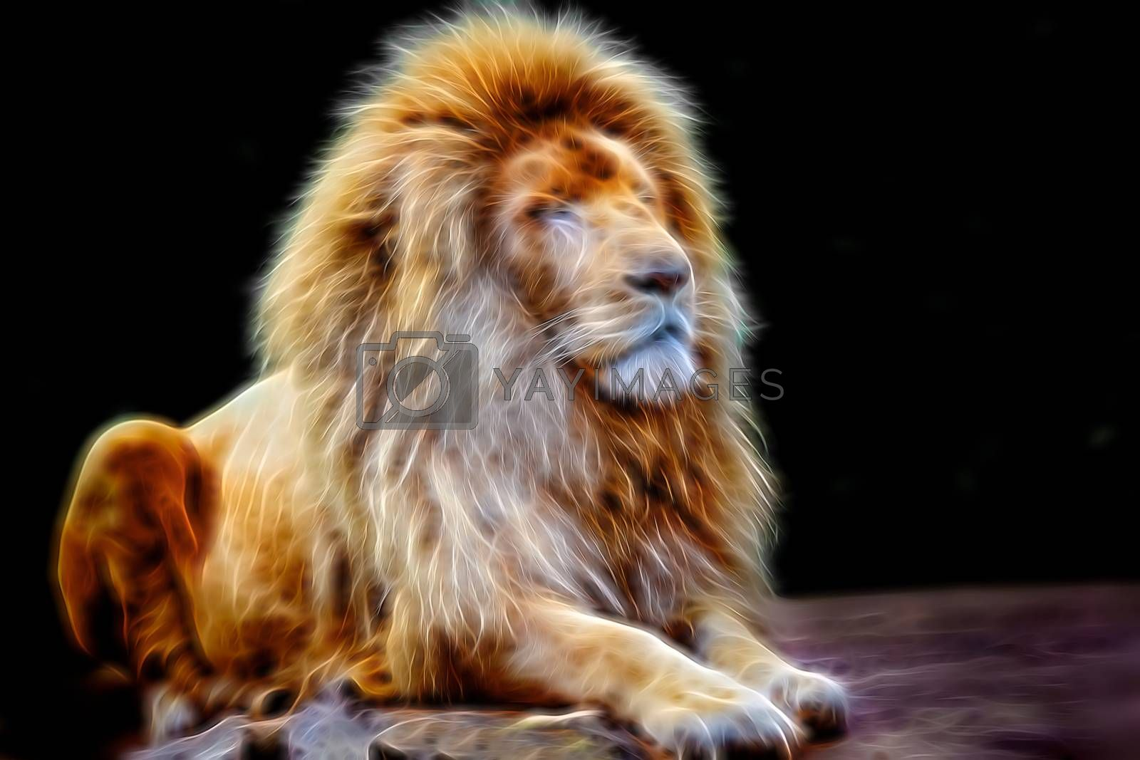 Fractal rendered portrait of an old male lion sitting on a rock
