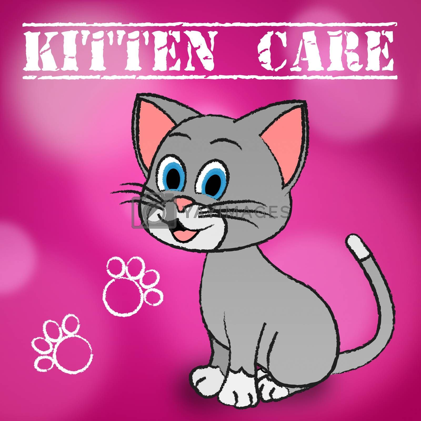 Kitten Care Representing Look After And Caring For Cats