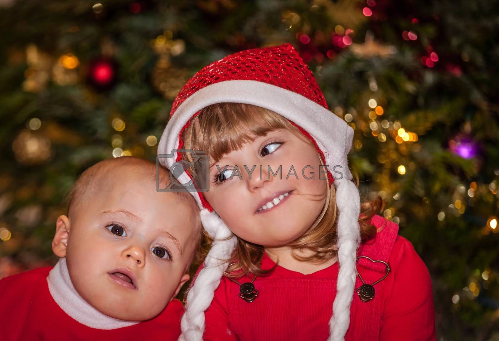 Royalty free image of Brother and sister under Christmas tree by pawopa3336