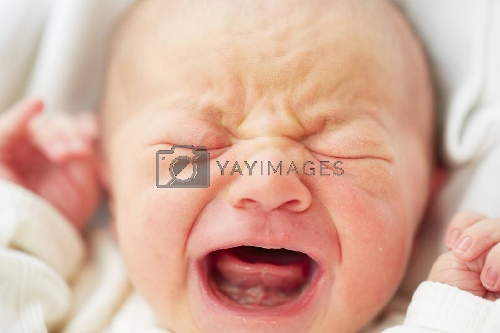 Newborn baby is crying - selective focus