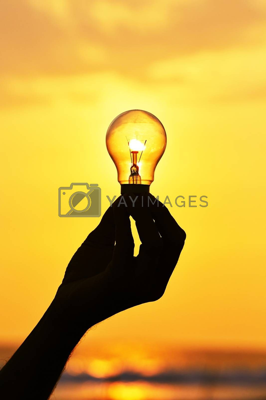 Silhouette of a light bulb at sunset.