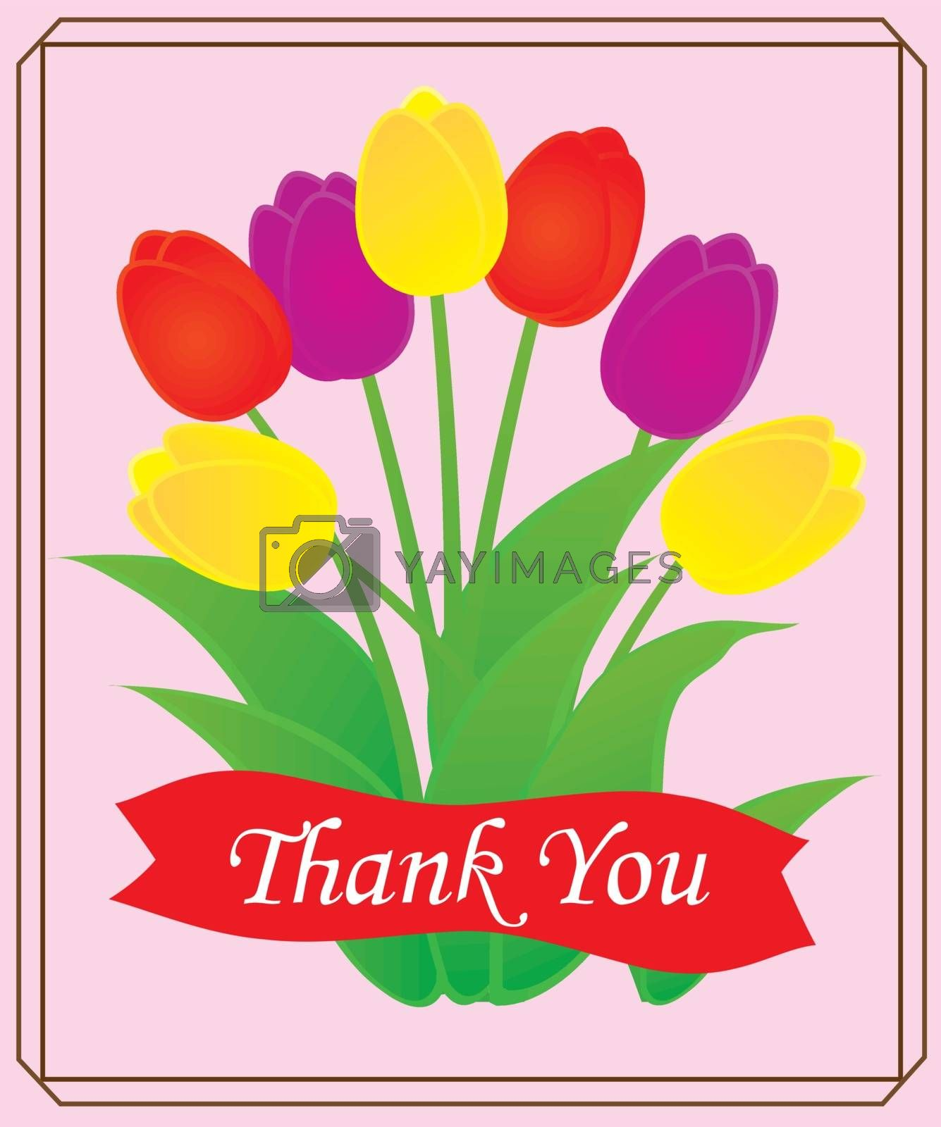 vector illustration of thank you card with tulip bunch
