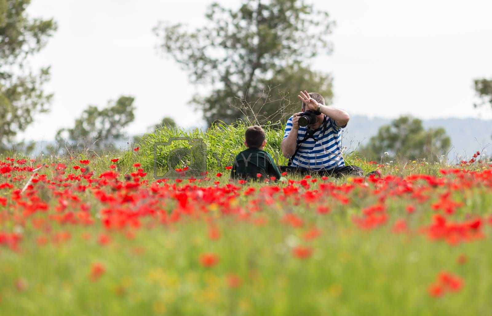 man photographing child in a field of poppies