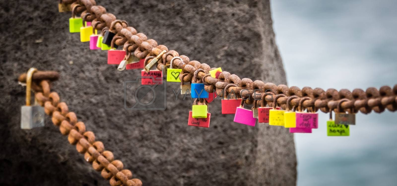 Royalty free image of Padlocks of lovers by pawopa3336
