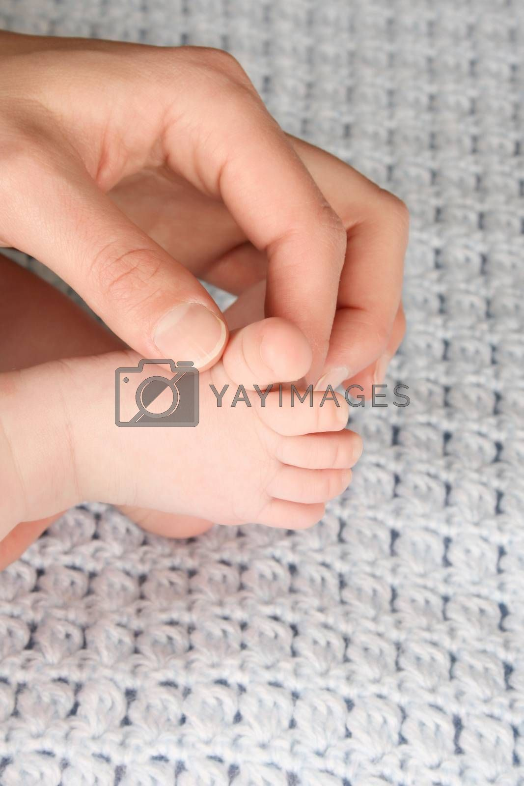 Hand of a baby in his mothers hand