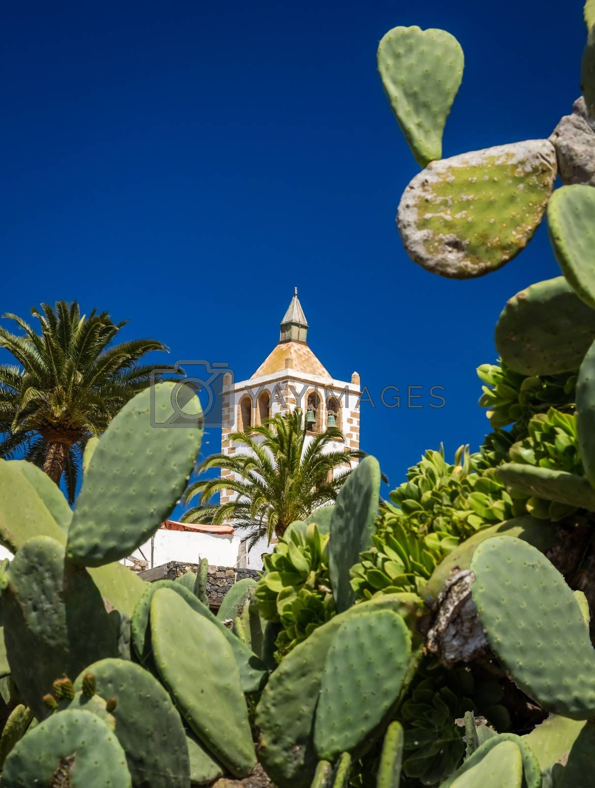 Bell tower of the Cathedral of St. Mary of Betancuria, an old capital of Fuerteventura, Canary islands, Spain