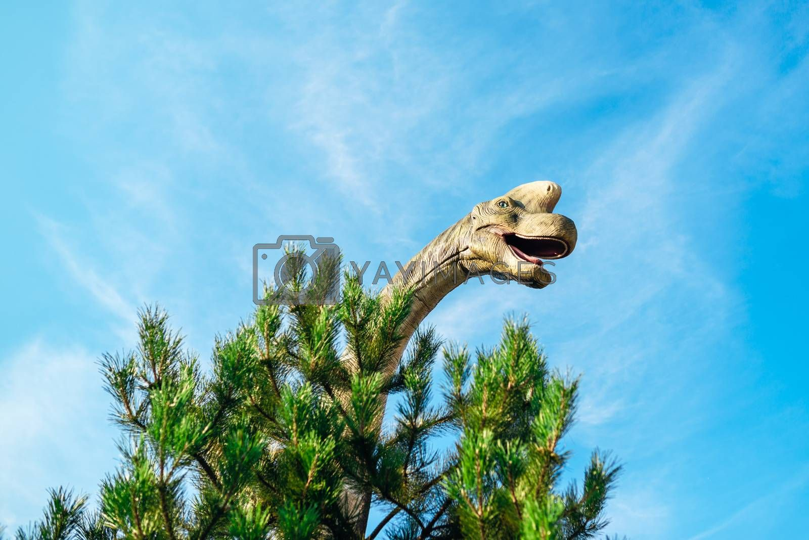 NOVI SAD, SERBIA - AUGUST 7, 2016: Brachiosaurus life size model of prehistoric animal in theme entertainment Dino Park. This was the largest known dinosaur, estimated at 26 metres.