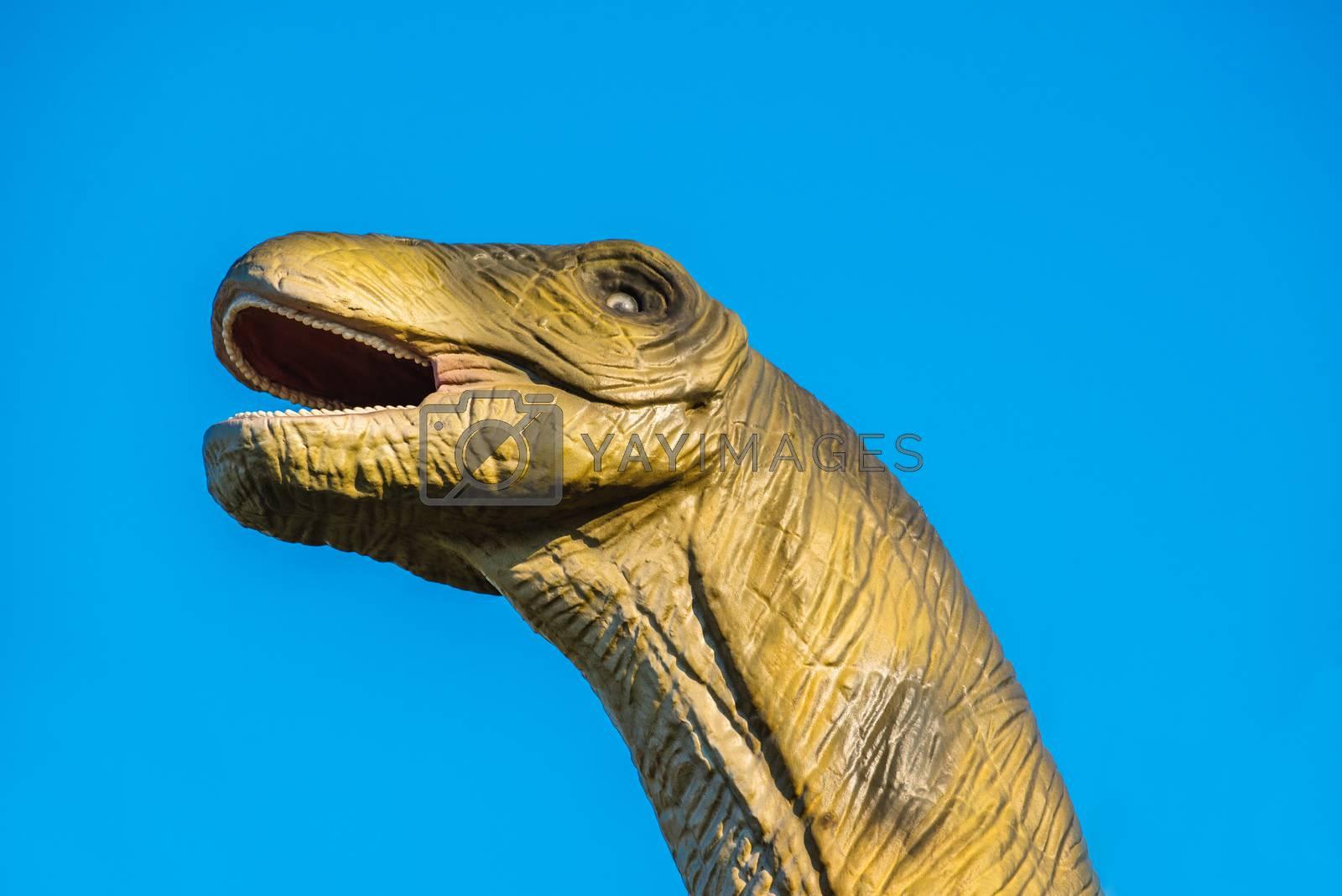 NOVI SAD, SERBIA - AUGUST 5, 2016: Brontosaurus life size model of prehistoric animal in theme entertainment Dino Park. Species of Brontosaurus range in age from 155 to 152 million years ago.