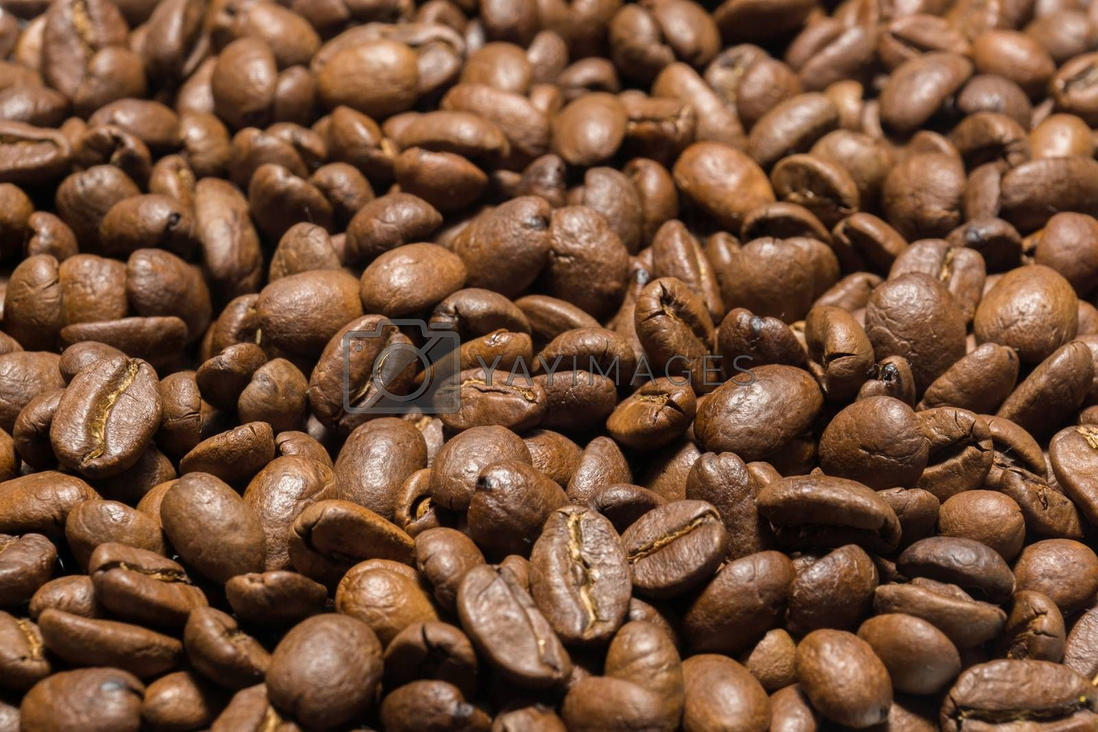 The photo shows roasted Arabica coffee beans