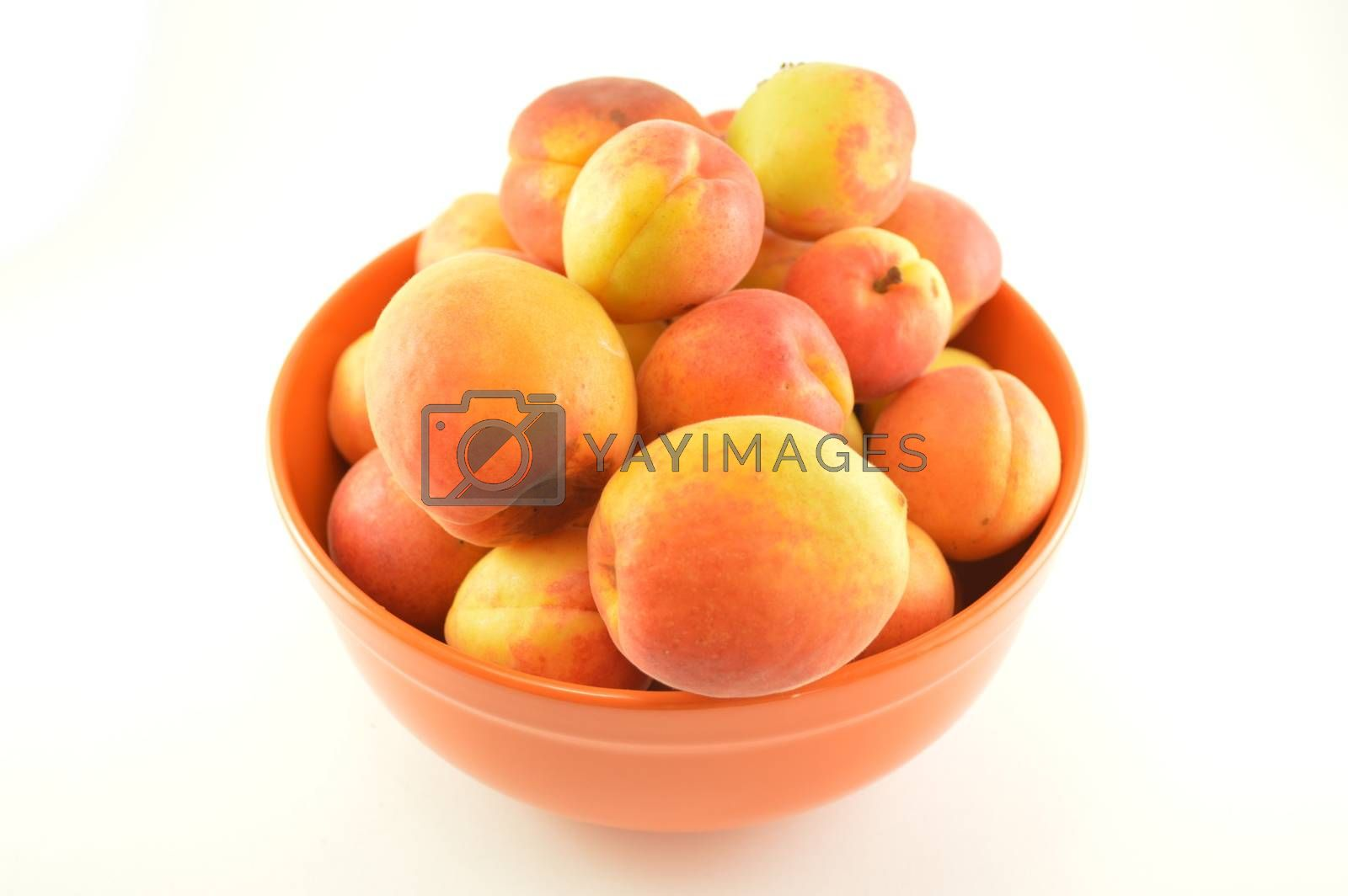 A still life of a bowl full of ripe peaches
