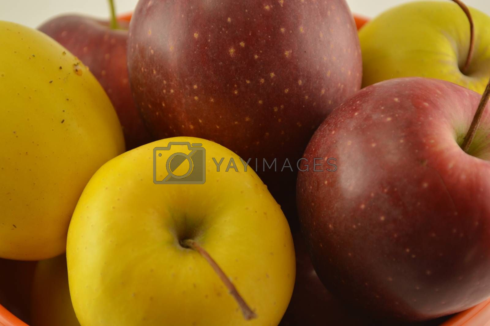 Red and white apple