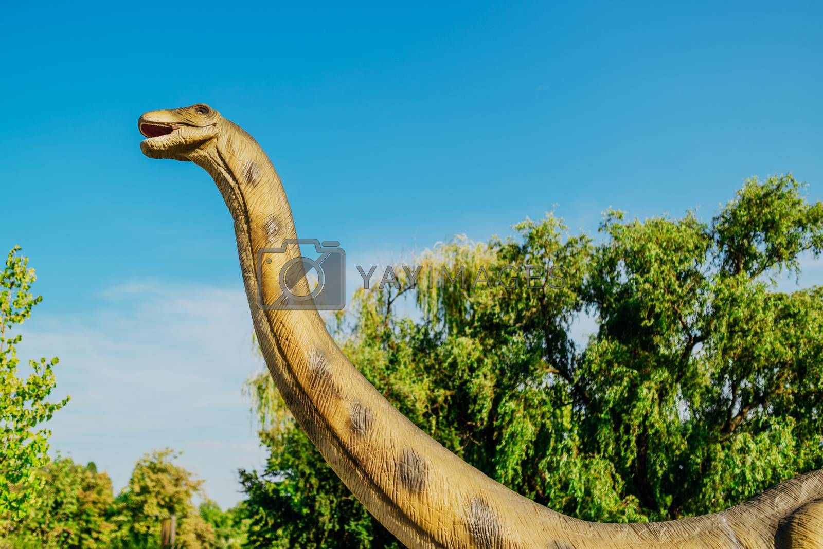 NOVI SAD, SERBIA - AUGUST 7, 2016: Brontosaurus life size model of prehistoric animal in theme entertainment Dino Park. Species of Brontosaurus range in age from 155 to 152 million years ago.