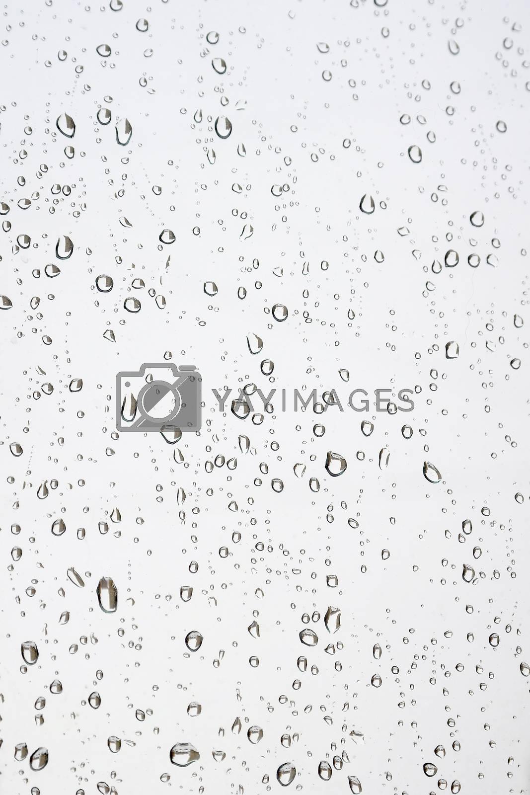 Drops of rain on the window by sergpet