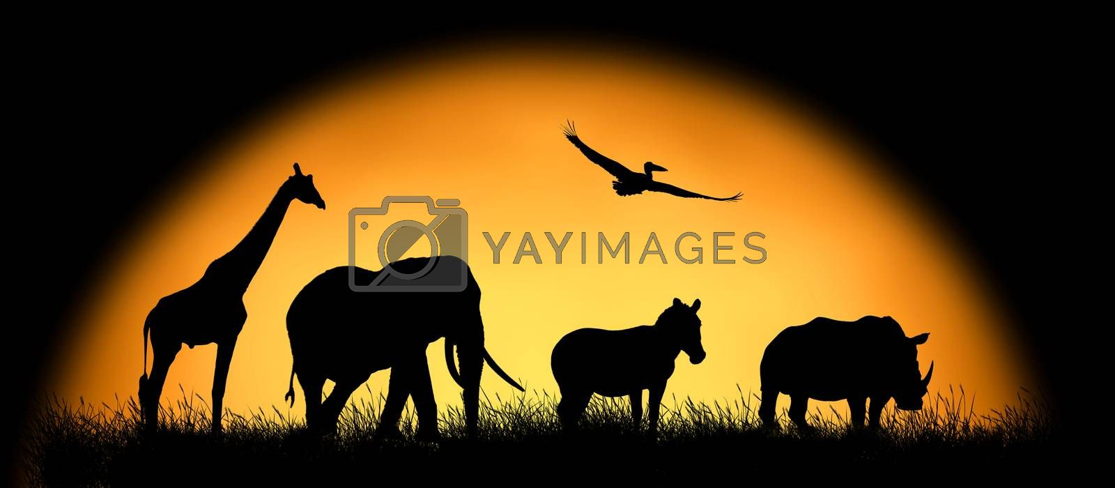 Silhouette african animals on the background of sunset. Large sun on a dark background