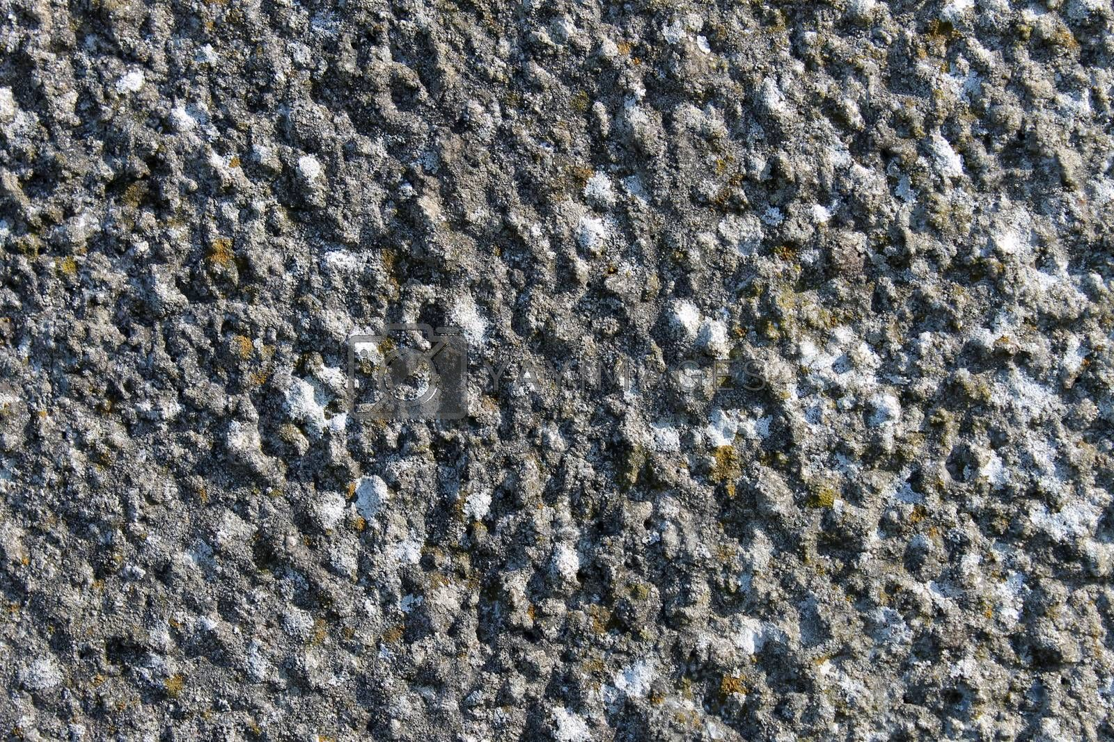 Royalty free image of Textured stone background by speedfighter