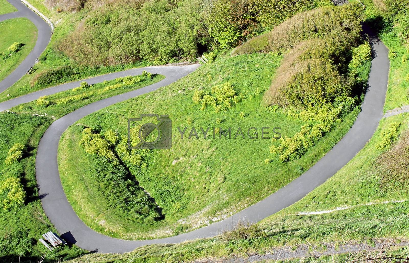 Royalty free image of Winding path on a hillside by speedfighter