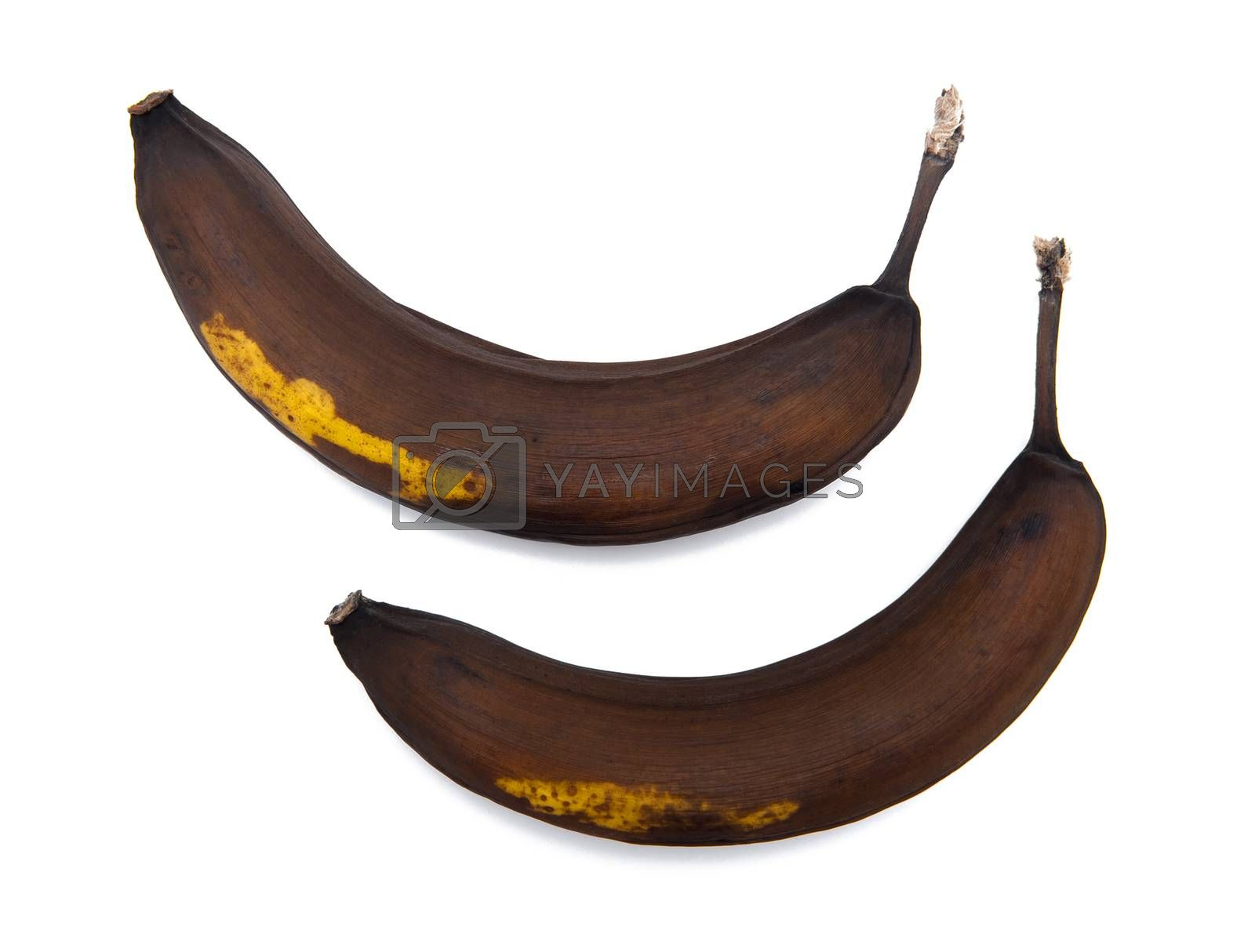 Rotten banana isolated on the white background
