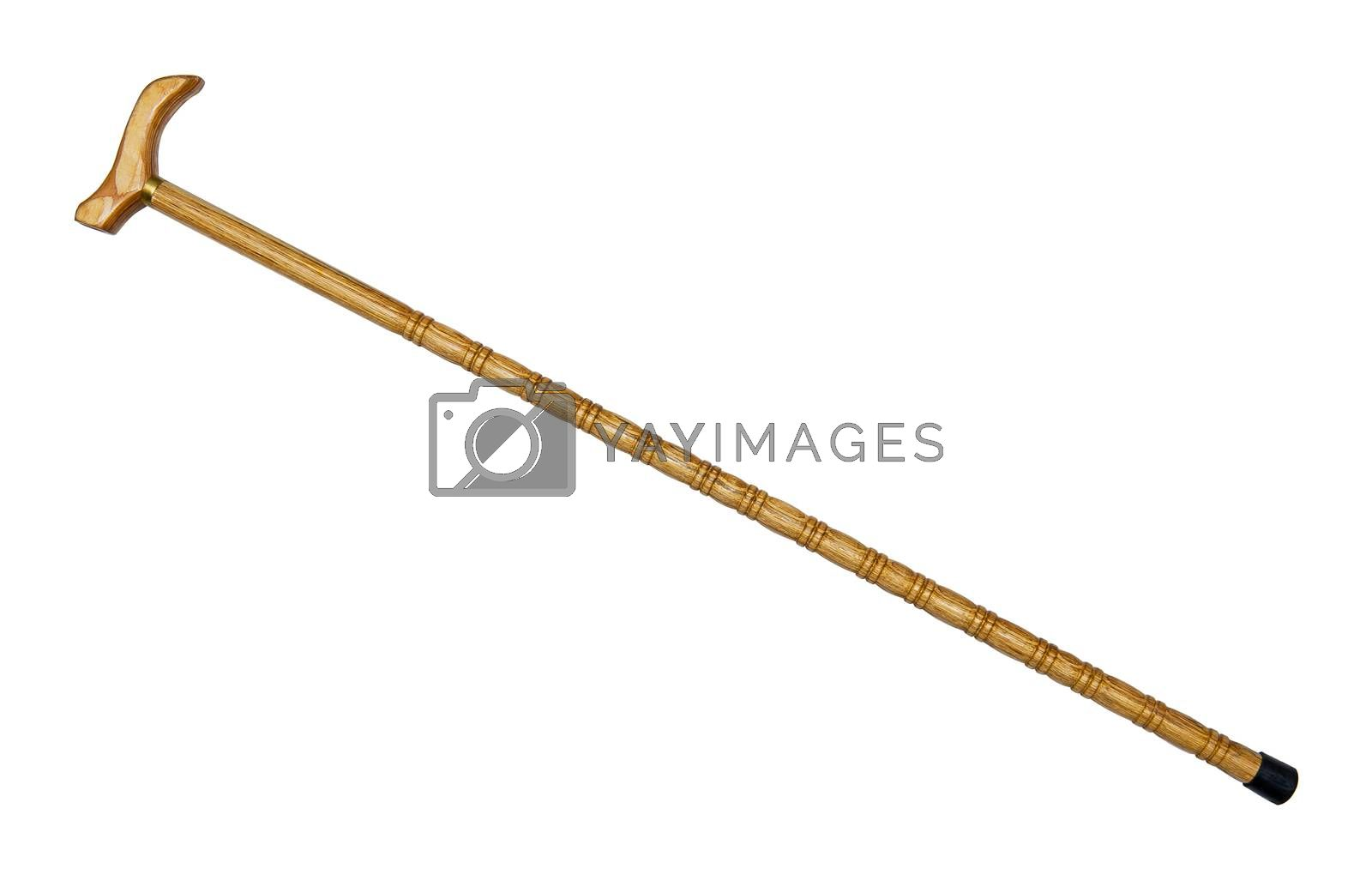 Walking stick isolated on the white background