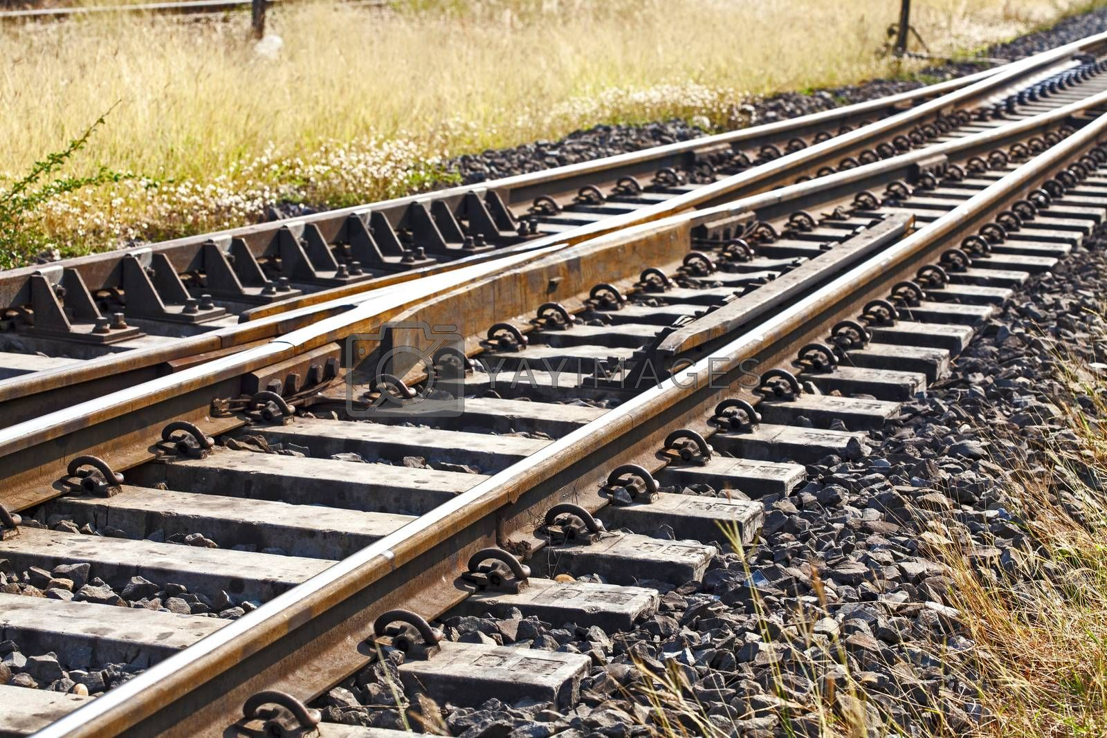 train tracks at the train depot