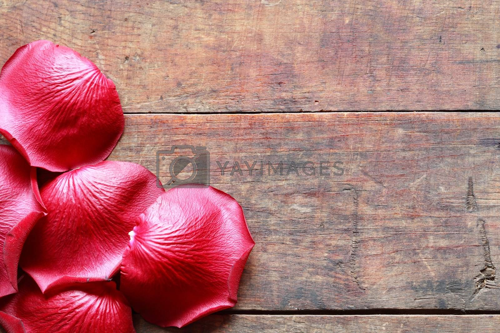 Romance concept. Few red rose petals on old wooden background