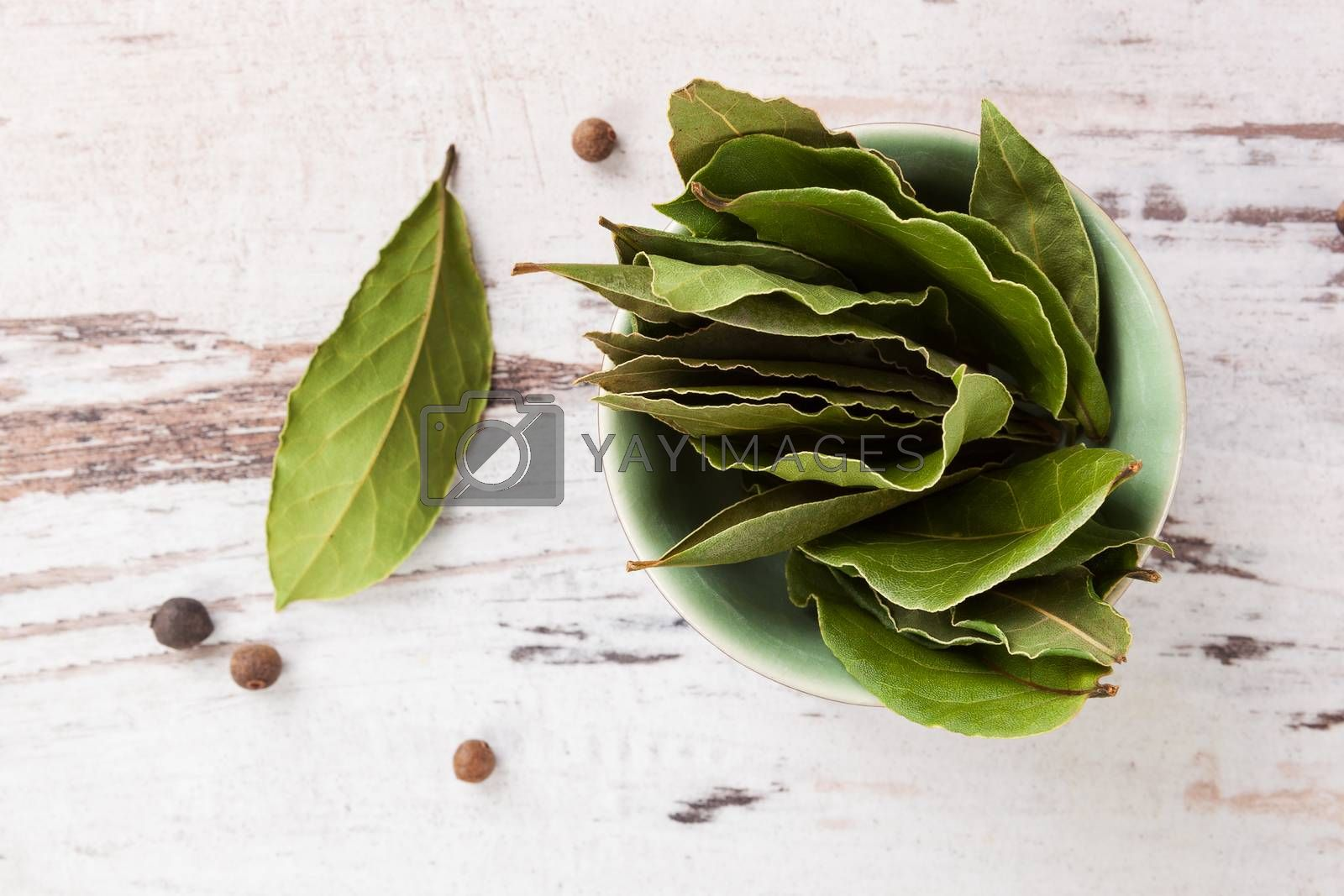 Dry bay leaves on white wooden textured background. Culinary herb, cooking ingredient and medical herb.