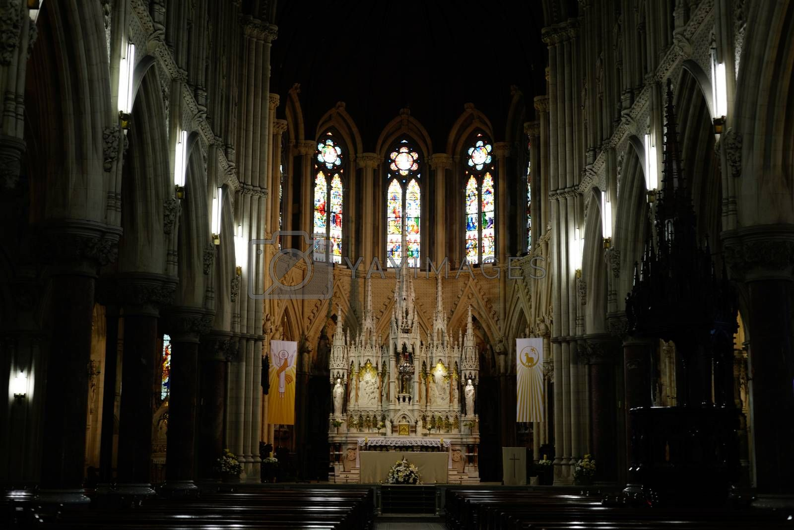 interior of  St Colman's Cathedral in cobh county cork ireland