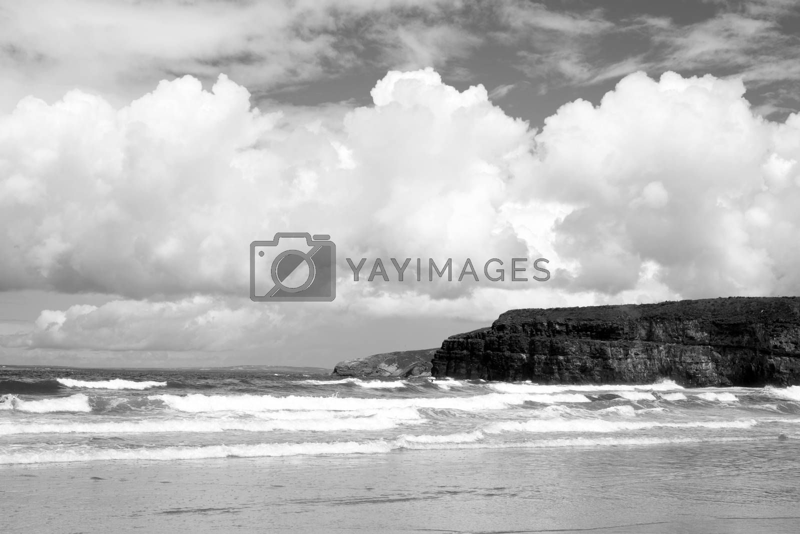 lone surfer on waves at the cliffs and beach in ballybunion on the wild atlantic way
