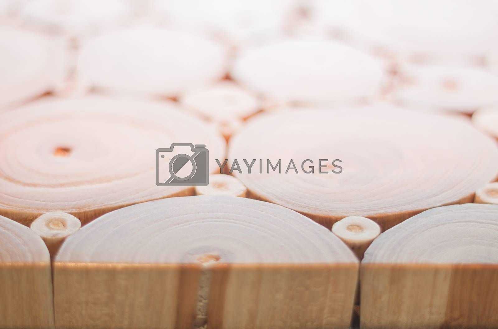 Royalty free image of Wood texture of cut tree trunk by punsayaporn