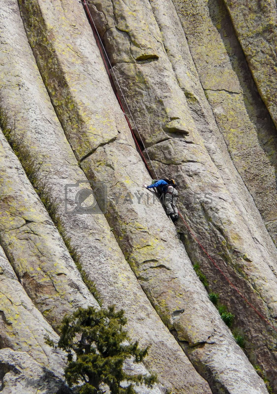 Devils Tower, Wyoming, USA - May 11, 2008: Man climbing on the wall of famous mountain Devils Tower in the Black Hills (Wyoming).