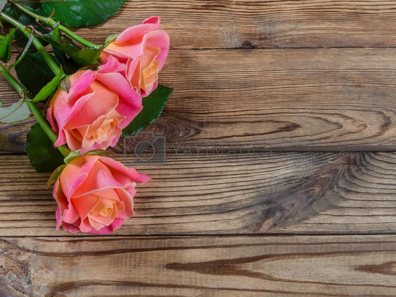 Beautiful roses on wooden table, rustic style