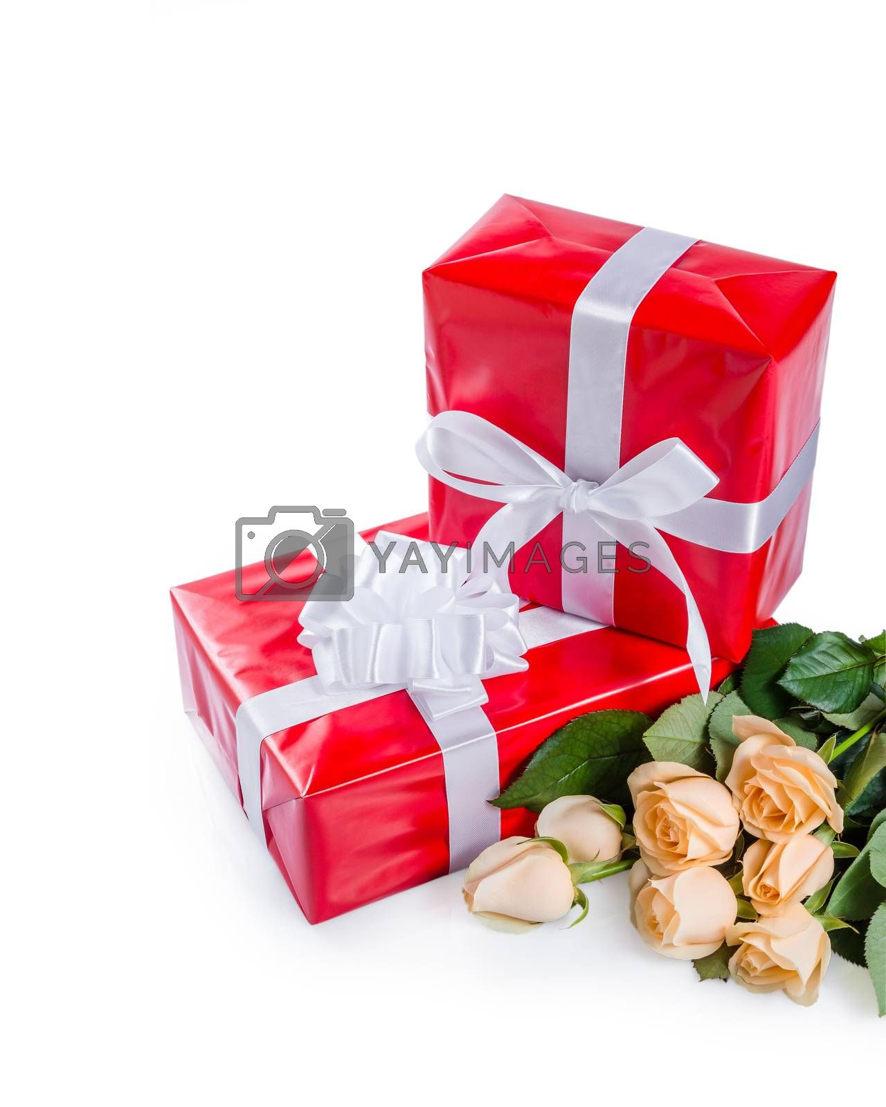 Beautiful rose flowers with gift box isolated on white background