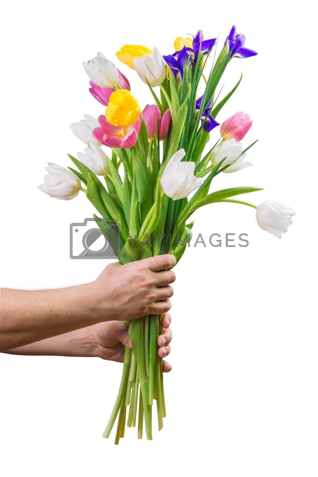 Large bouquet of beautiful flowers in male hands isolated