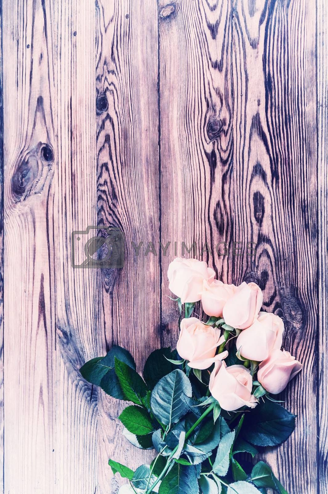 Vintage Roses on rustic wooden table