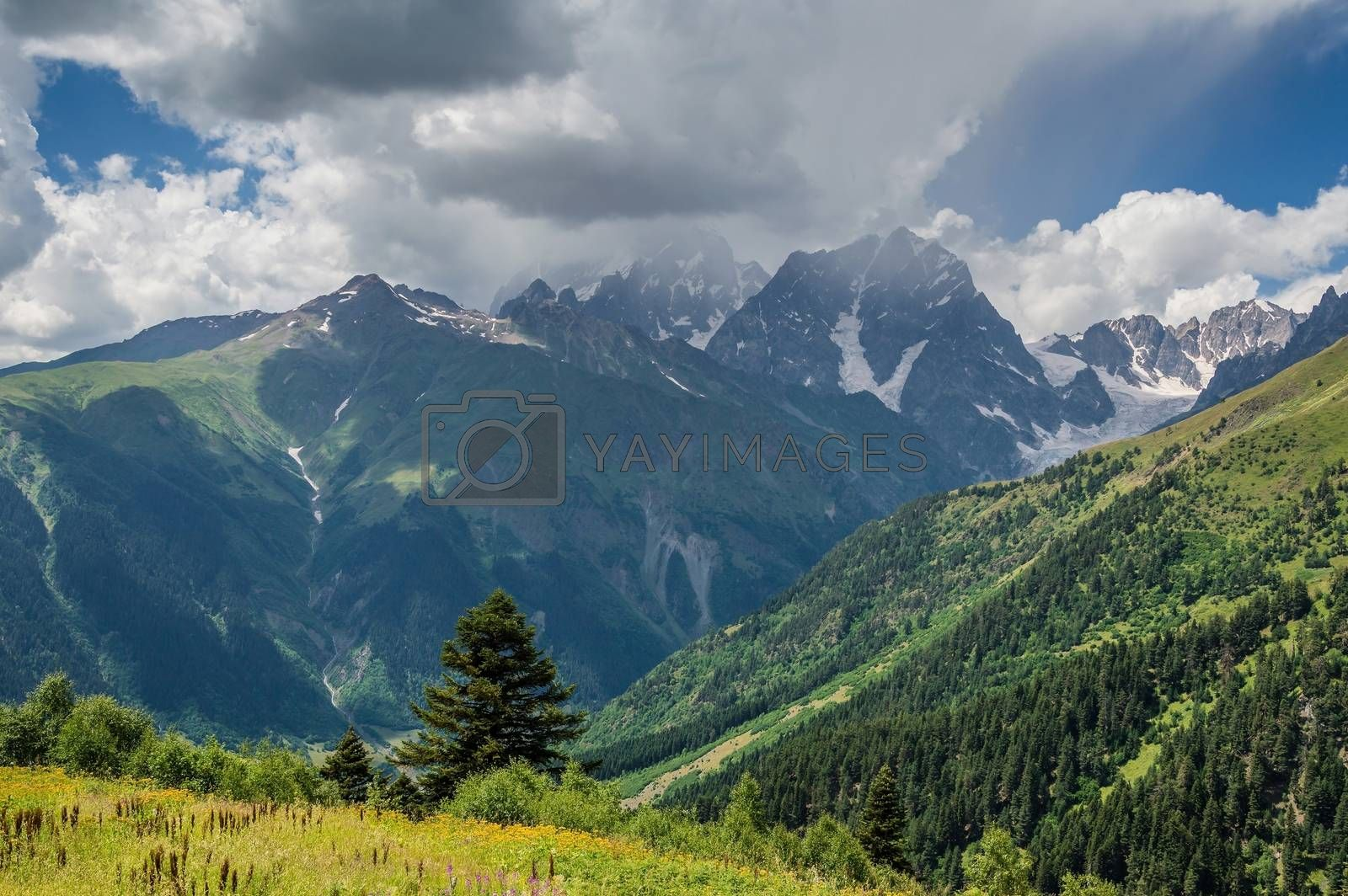 Royalty free image of Landscape with mountain by firewings