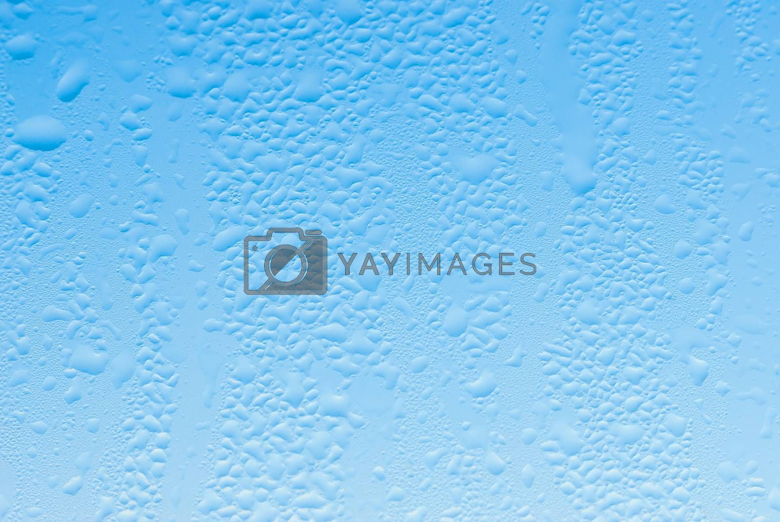 Royalty free image of Drops on glass by firewings