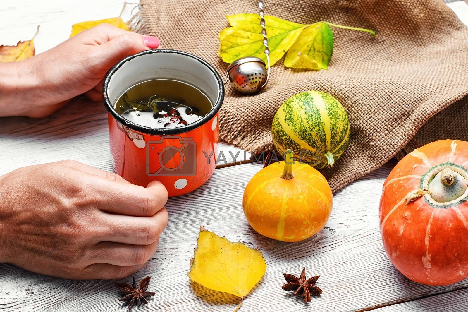 Cup of tea in hand and the autumn decoration with pumpkins