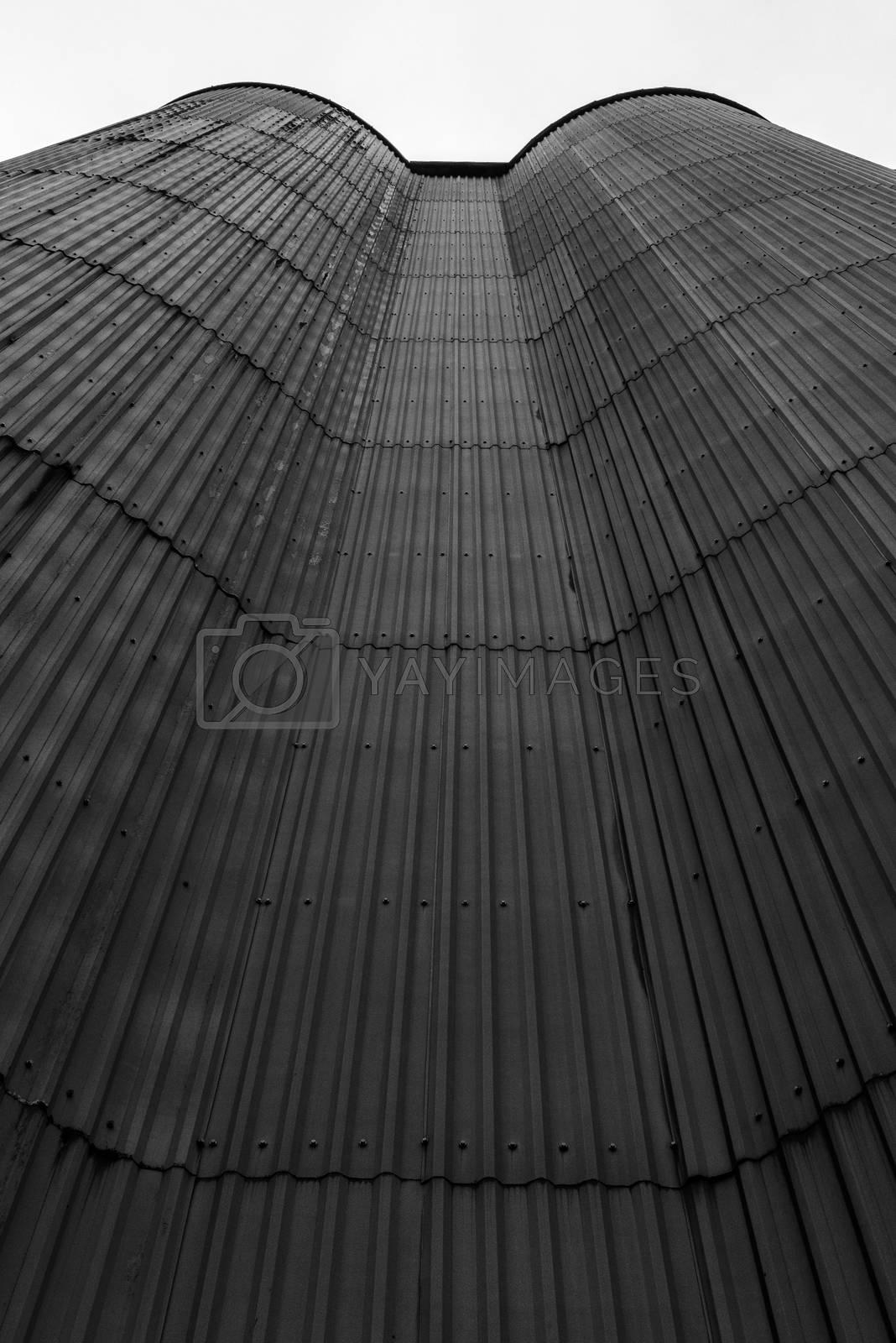 An old corrugated iron wall reaching towards the sky. by vidar.fredheim@dabb.no