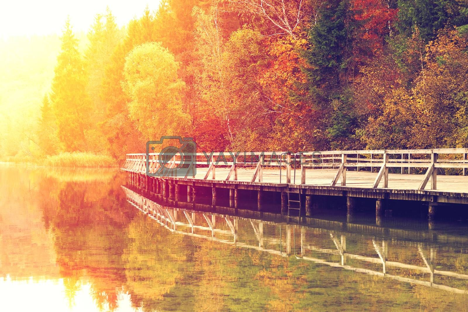 Yellow sun glow on autumn landscape with colorful trees and wooden pier reflected in the lake water