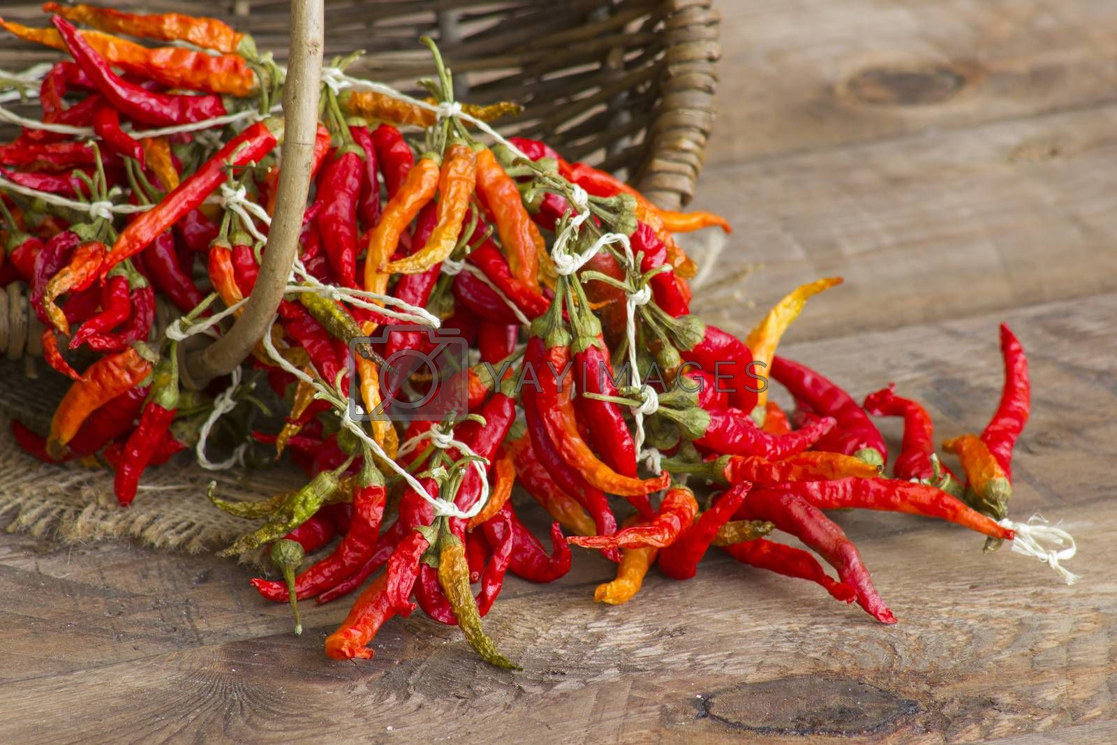 red chot chili peppers
