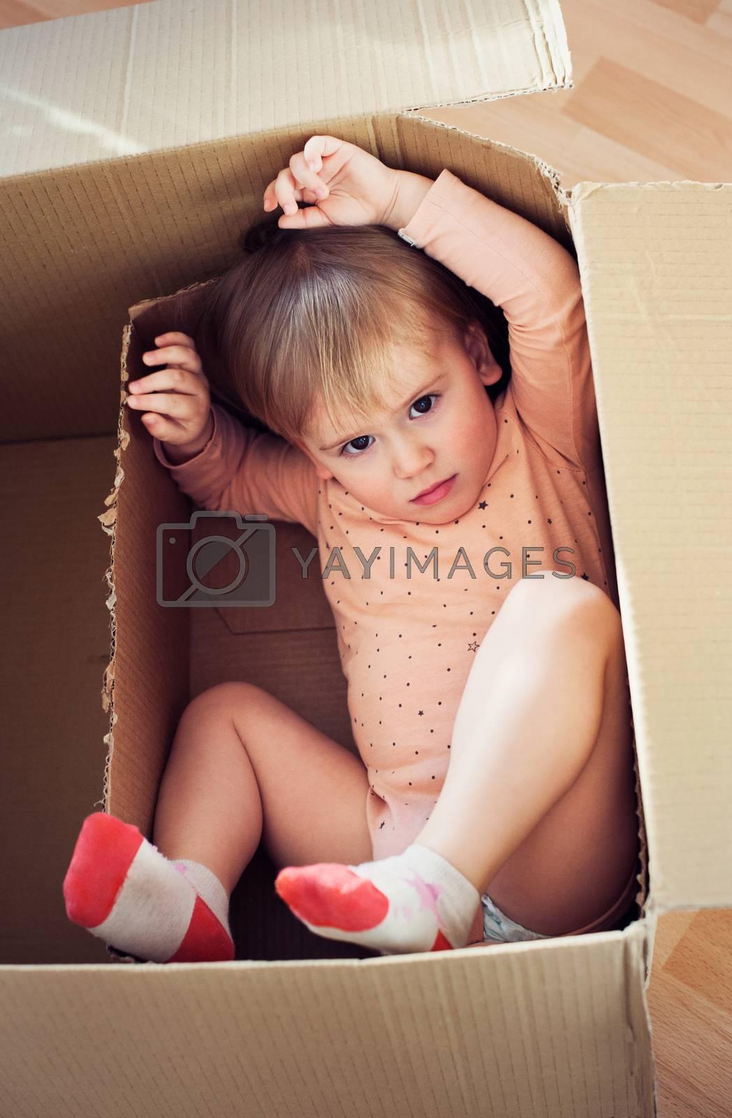Baby toddler in a carton box having fun