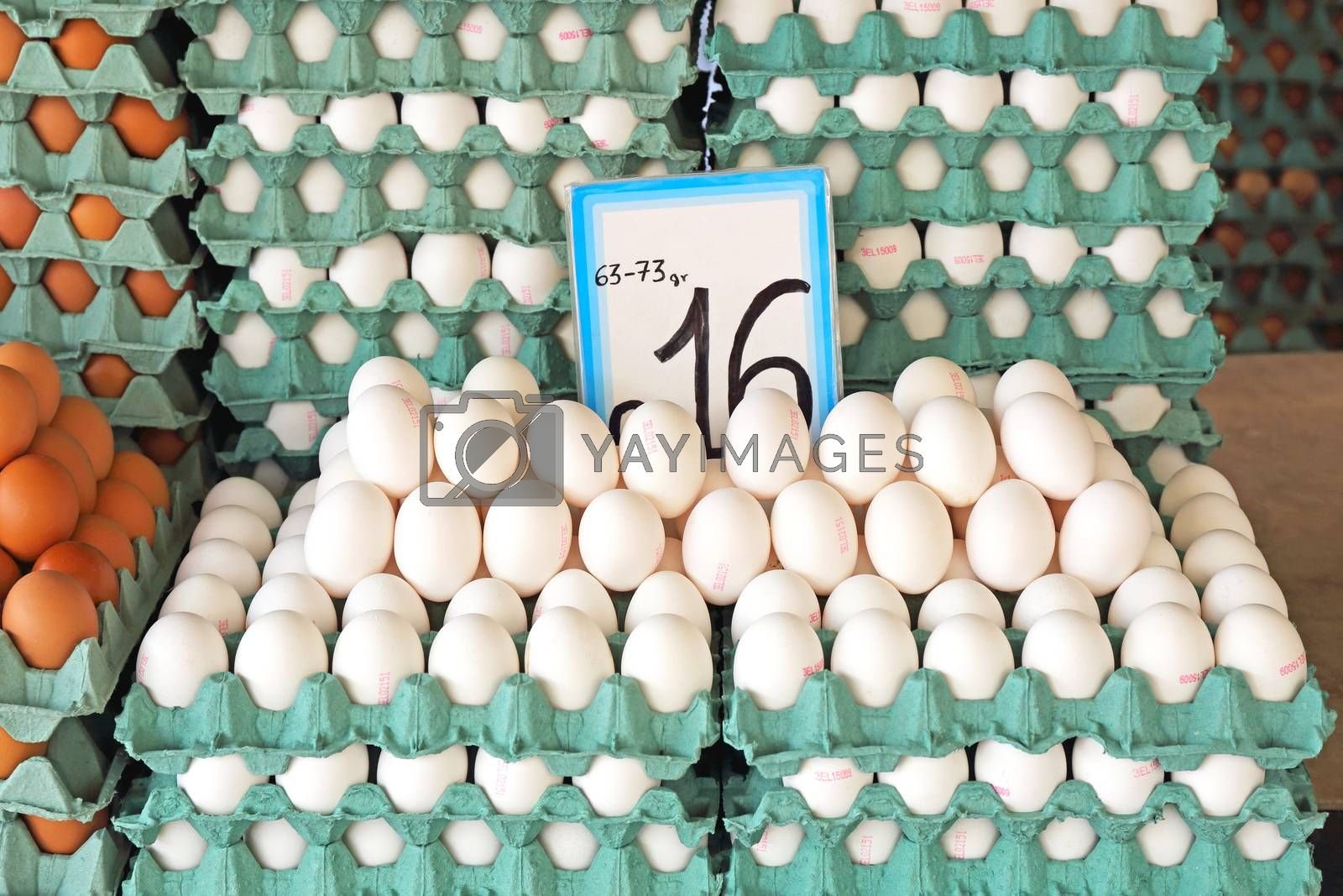 White Eggs For Sale at Farmers Market