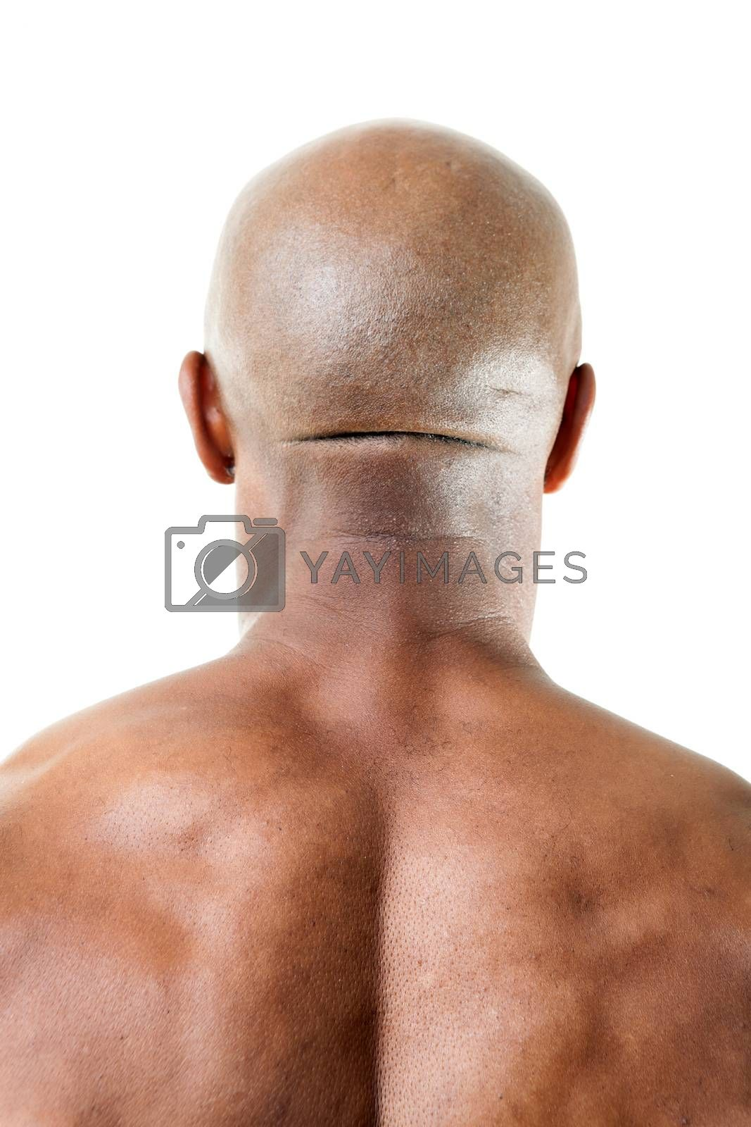 Closeup of the back of a muscular mans head and upper back isolated over a white background.